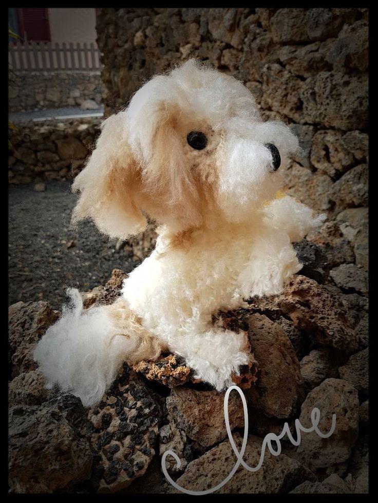 Havaneser,Hund,realistisch gehäkelt, Amigurumi,Handarbeit,handmade real