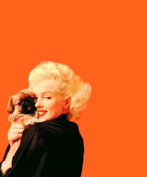 Come and join me, Marilyn Monroe in Colour on Facebook :-) :-)