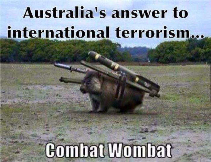 Stop turning wombats into weapons