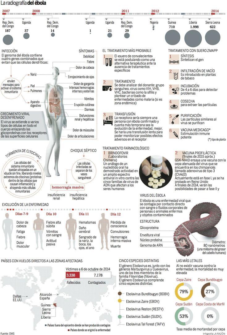 La radiografía del Ébola #infografia #infographic #health vía: www.larazon.es