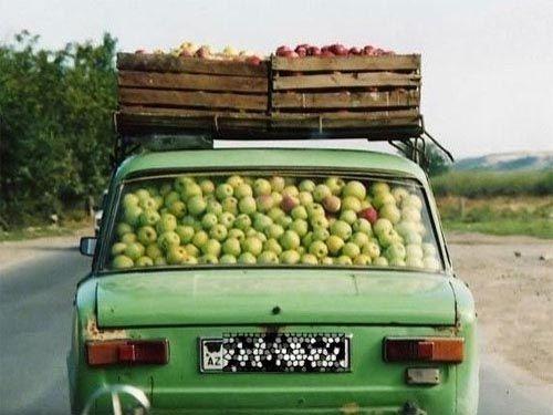 Harvest delivery? Should've gone to MrCarrier.com!