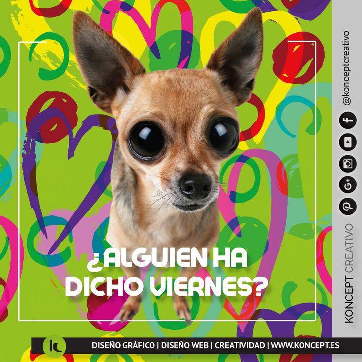 Si si siii! Has leído bien es viernes! A pocas horas de rozar el #happyweekend vamos acabar la semana con la misma pasión con la que comenzamos y luego a disfrutar del fin de semana. www.koncept.es #findesemana #finde #viernes #grandesmomentos #disfruta #dog #perro #fantastico #imageneschistosas #fotosdivertidas #imagenesconfrases #wow #bien #diseñografico #diseñograficobarcelona #graphicdesigner #barcelona #rrss #redessociales #sigueme #followme #feliz #pinterest #design #frases