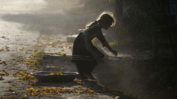 Een Afghaans meisje verzamelt gevallen bladeren in Jalalabad