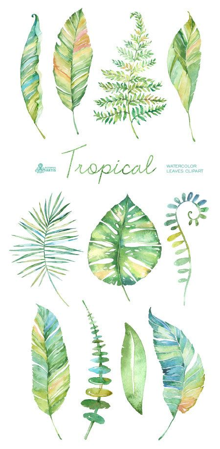 Tropical watercolor leaves. Handpainted clipart por OctopusArtis
