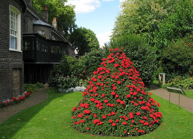 Victorian garden with Pelargonium pyramid | by Geffrye Museum of the Home
