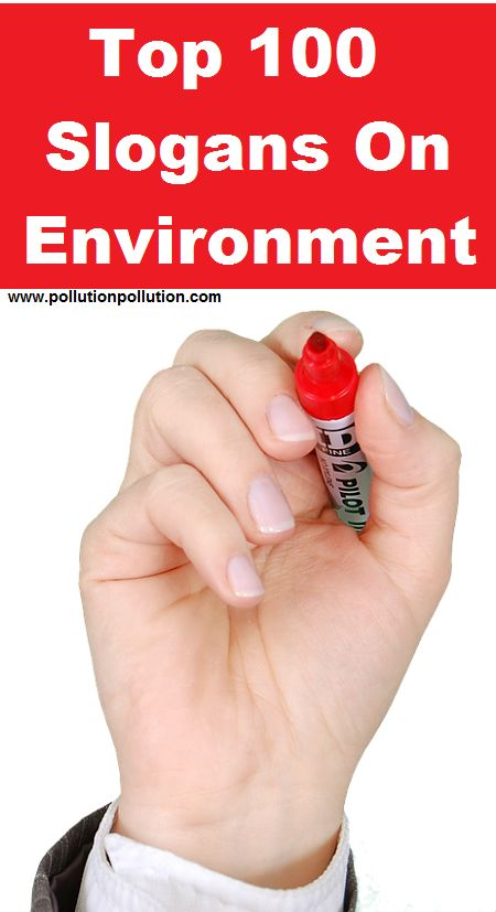 Chant them, share them and display them everywhere to raise environmental awareness http://www.pollutionpollution.com/2013/06/top-100-slogans-on-environment-for-all.html