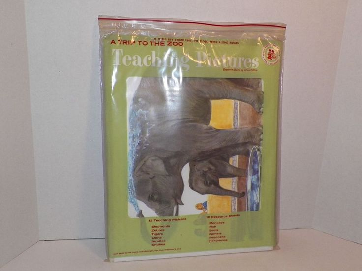 Teaching Pictures A Trip To The Zoo 1966 David C Cook Resource Sheets Complete  #TeachingPictures