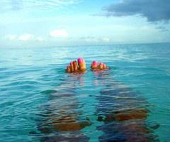 crabby me? toss me in water. happy me.