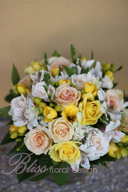Island Sands roses - mixed with yellow and cream.  You can see how much darker it is compared to the growers photo.