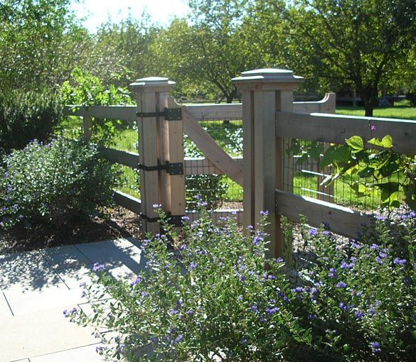 wood fence with wire panels. I like the simplicity but that it doesn't have the big open spaces of most wire fences.