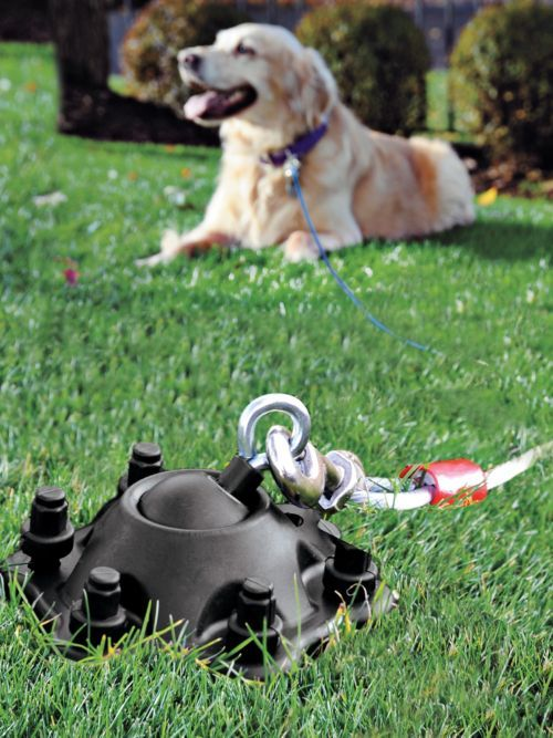 SureSwivel- rotating dog tie out, dog run, and tether | Solutions