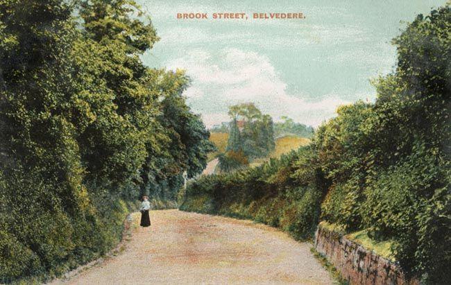 PCD_14 Brook Street, Belvedere 1908