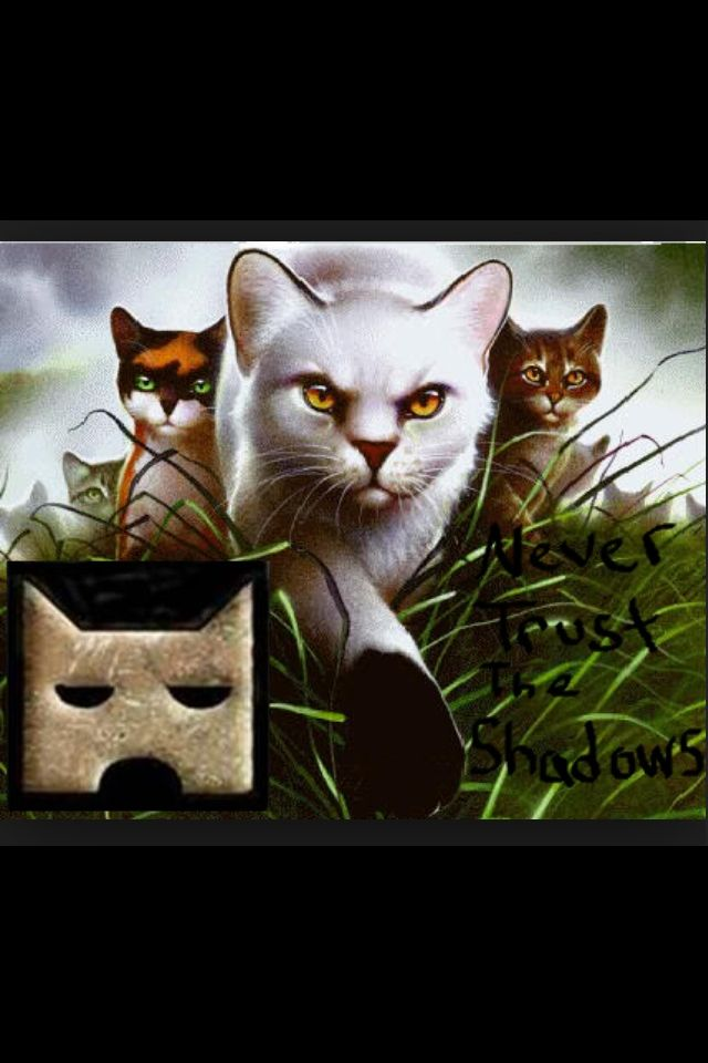 11 Best Images About Shadowclan On Pinterest To Be Cats