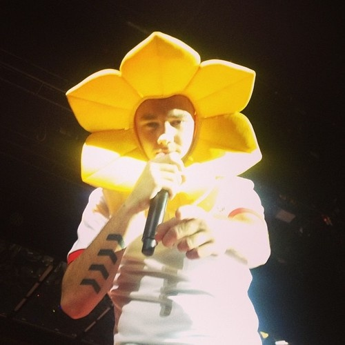 Only Liam, he's such a puppy. Well, in this case a flower but eh. -shrug- lln