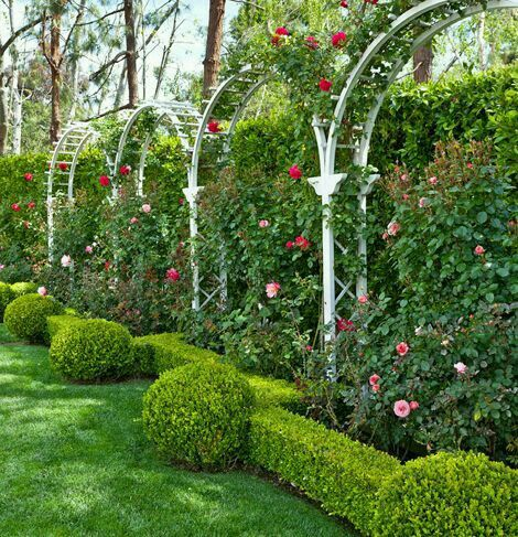 Best 20 formal gardens ideas on pinterest formal garden design courtyard gardens and small - Garden in small space collection ...