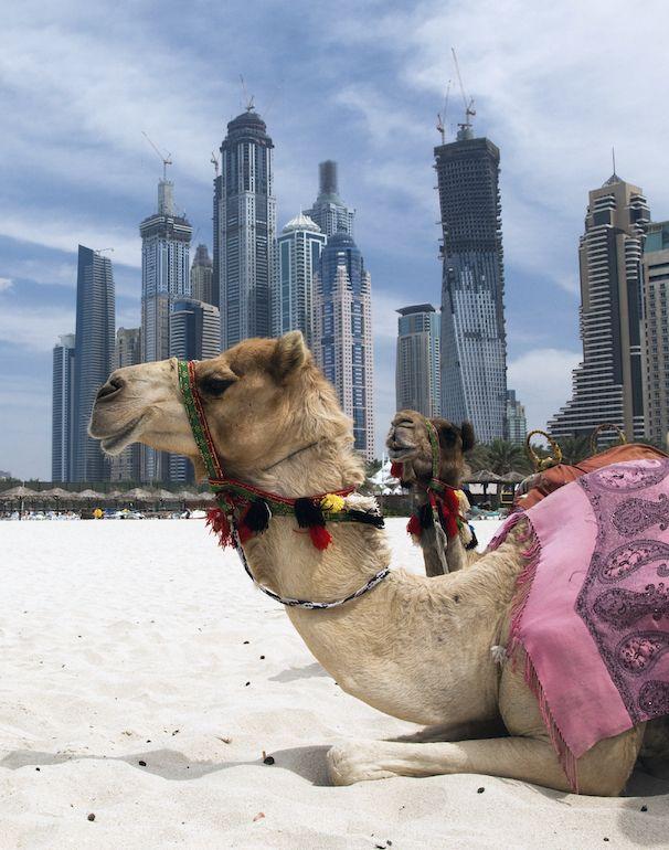 #Dubai Puntate verso il #Jumeirah Beach Park. Pochi euro e avrete accesso alla spiaggia attrezzata con ombrelloni e docce.