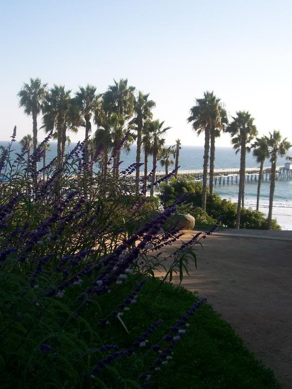 San Clemente! Miss this place so much!