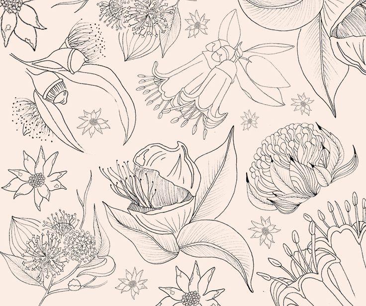 Some Australian Native Flowers. #Flowers #AustralainNative #LittlePigment