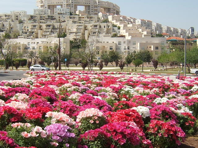 Modiin, Israel...  For all the latest news from Modiin... www.modiinfo.com