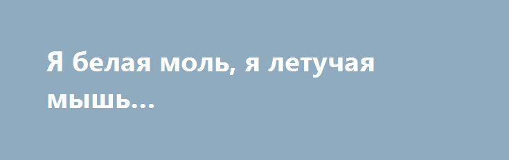 Я белая моль, я летучая мышь… http://rusdozor.ru/2016/08/21/ya-belaya-mol-ya-letuchaya-mysh/  Поговорим немного о «политэмигрантах». Это уже какая-то особая каста. Знаете, есть такие люди, которые всем поголовно хвастаются своими болячками. Надуманными и реальными, но хвастаются. А если попробуешь не пожалеть, то эти овчарки накинутся на тебя и порвут на мелкие запчасти, ...