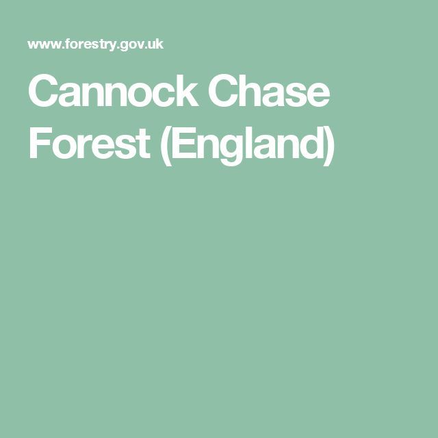 Cannock Chase Forest (England)