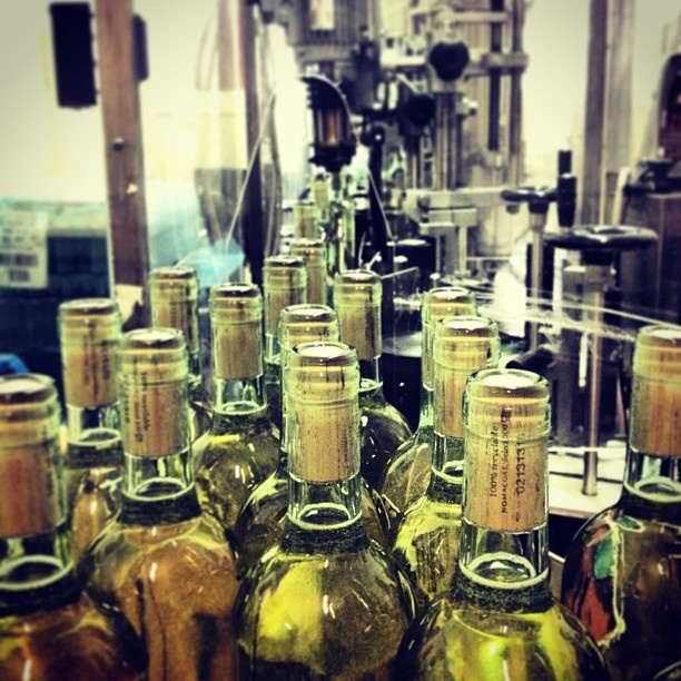Wine tour in Puglia, Italy, rated top 10 wine destinations in the world for 2013.  #italy #casteldisalve #puglia #toursouthernitaly #winetours #golfandwinetours http://golfandwinetours.com/tour-southern-italy-extended-escape/