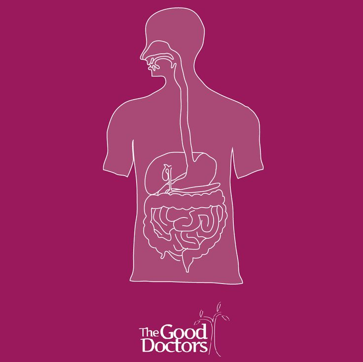 Did you know that 70% of the body's immune system is in the digestive tract? Maintaining balanced digestive health is crucial to the body's overall well-being.