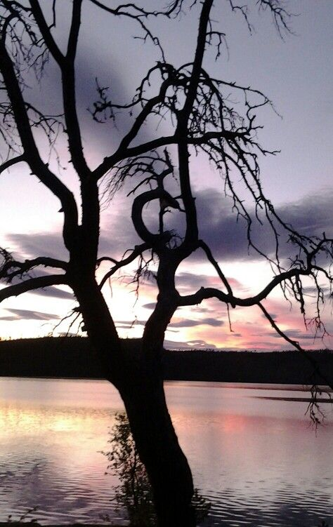 Inarinjärvi, Lapland,  Finland