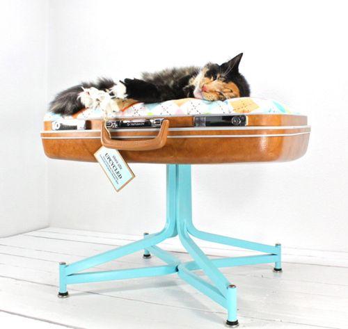 DIY #cat bed: Cat Beds, Suitcase Pet, Vintage Suitcase, Pet Stuff, Suitcase Bed, Pets, Pet Beds, Suitcases