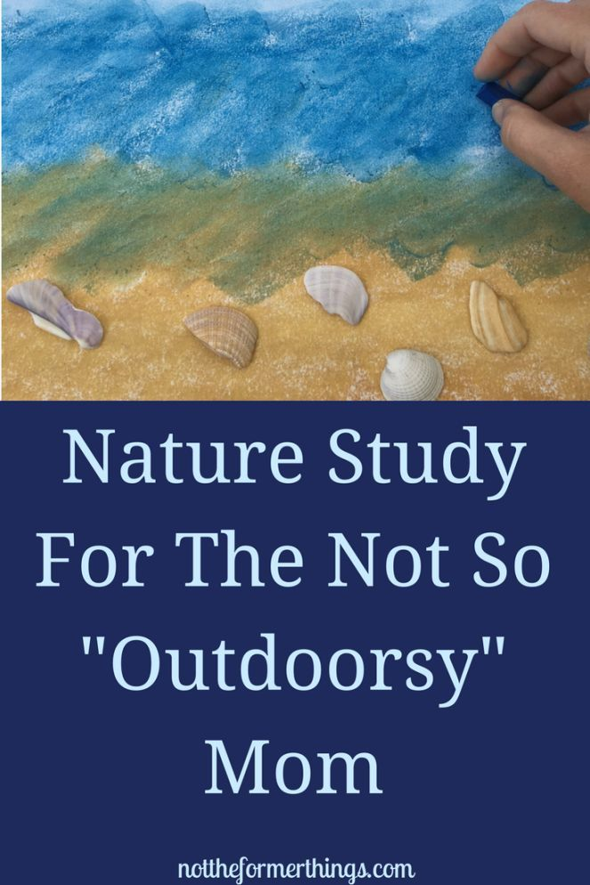 """Nature Study For The Not So """"Outdoorsy"""" Mom - Not The Former Things"""