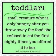 Toddler Quotes Awesome Best 25 Funny Toddler Quotes Ideas On Pinterest  Toddler Quotes