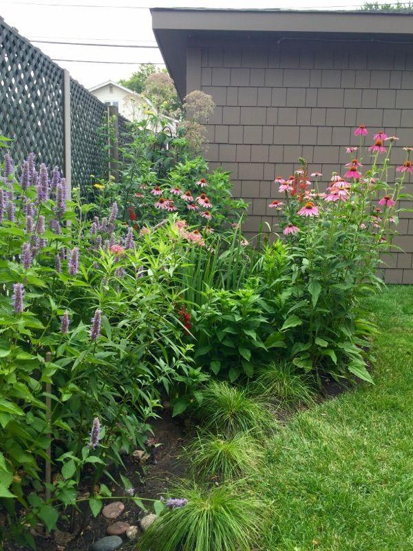Great Garden Ideas In Modern Home Backyard Design Garden top 25