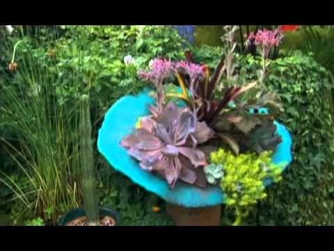 Райские сады, 4 сезон 8 серия