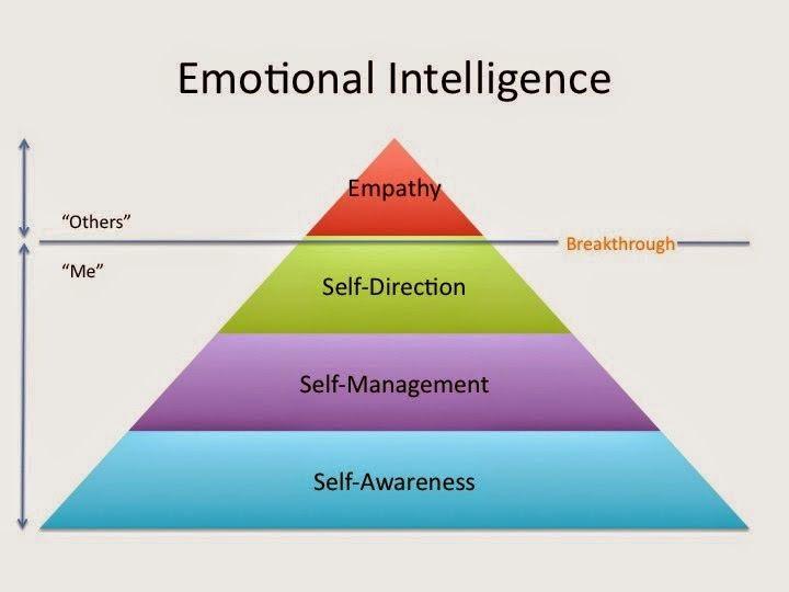 Experimental Theology: Emotional Intelligence and Sola Scriptura