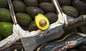 Rising avocado prices fuelling illegal deforestation in Mexico