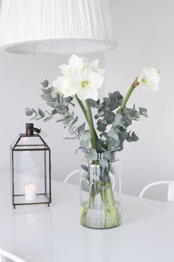 eucalyptus and white amaryllis in a simple glass jar - lantern and tine k light -  MITT VITA HUS