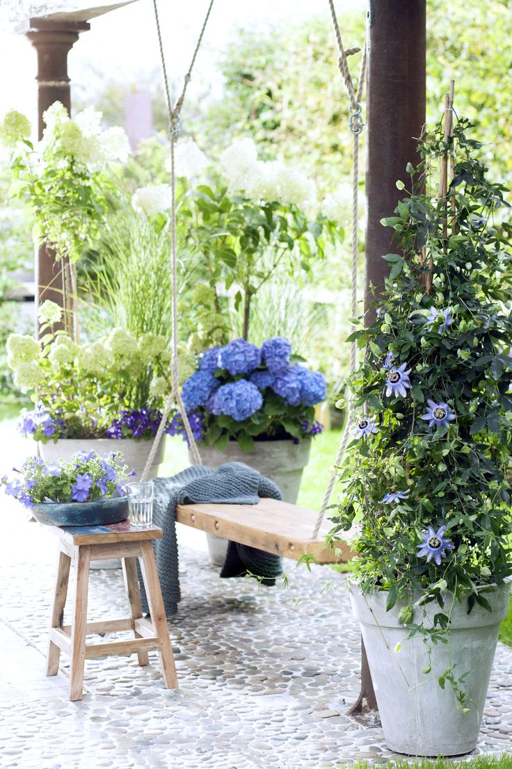 Popular Mit den angesagtesten Pflanzentrends ist Ihr Garten zu jeder Jahreszeit up to date