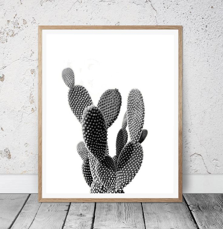 Cactus Print, Black and White Photography, Modern Minimalist, Cactus Photo Wall Art, Large Poster, Printable Download, Southwestern Decor by MSdesignart on Etsy