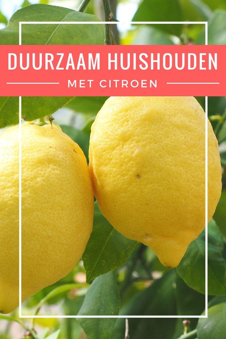 In deze editie van de reeks 'duurzaam huishouden' alle toepassingen van citroen om het huishouden natuurlijk, eenvoudig en betaalbaar te maken.