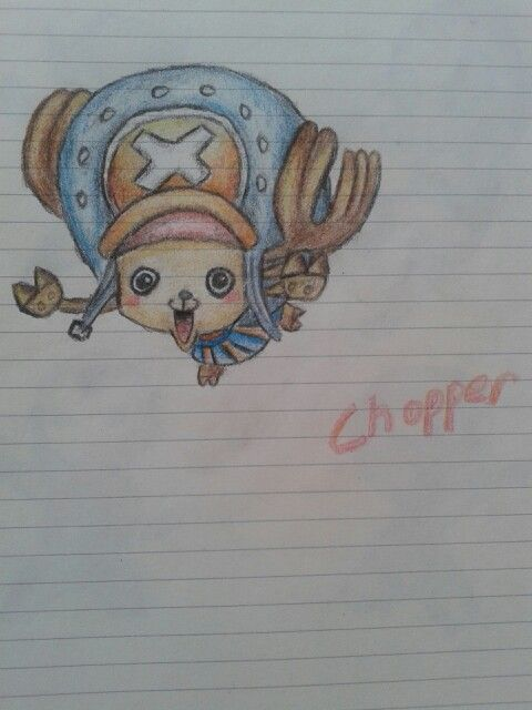 onepiece chopper drawing