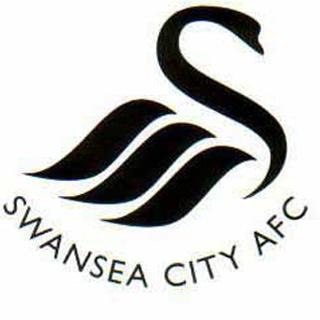 Swansea city f.c