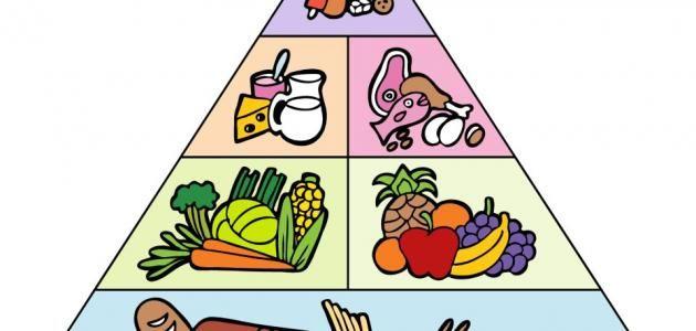 تم إعتماد الهرم الغذائي لتصوير حاجات الأفراد الغذائية والتوصيات الغذائية لأنواع وكميات الأطعمة المتناولة يوميا اشياء تساعد على تخفيف الوز Enamel Pins Enamel