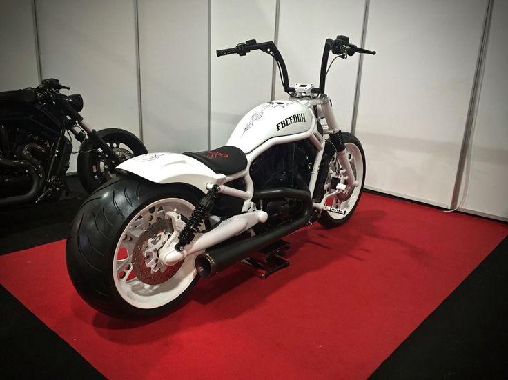 Custom V Rod Night Rod Harley Davidson Bobber