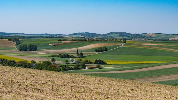 Fruchtbares Land - Niederösterreich