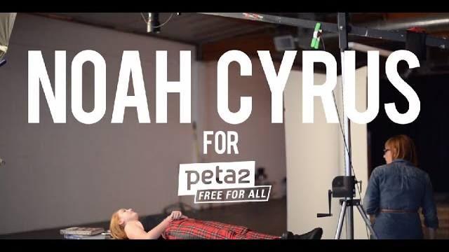 Don Lichterman: Noah Cyrus is on peta 2TV