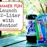 It's Overflowing | Tips to Simplfy, Beautify, Delight: How to Launch a 2 Liter of Soda with Mentos {Video}: Homeschool Activities, Homeschool Ideas, Fun Stuff, Kids Activities, Kids Ideas, Mento Videos, Fun Things, Summer Fun, Fun Science