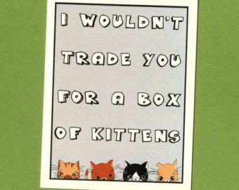 A BOX OF Kittens - Funny Love Card - Funny Valentine Card - Funny Valentine - I Love You Card - Cute Love Card - Kittens Card - Love Card