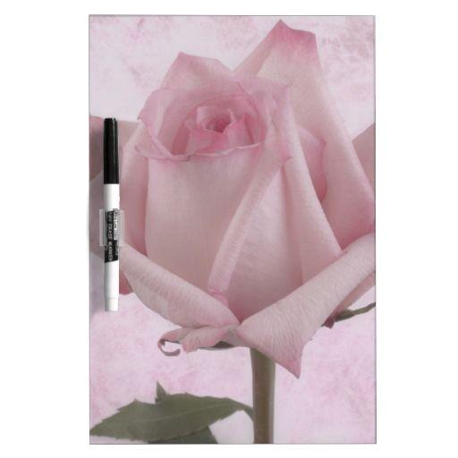 Soft Pink Rose Flower Dry Erase Whiteboards