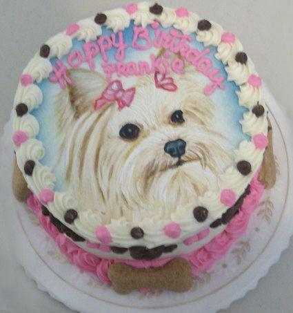 59 best yorkie birthday cakes images on Pinterest Dog cakes