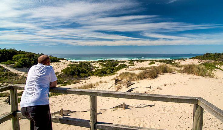 Submarine Beach walking track, Myall Lakes National Park. Photo: John Spencer/NSW Government